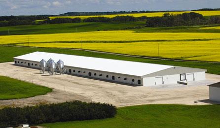 hog-barn-construction-concrete-western-canada